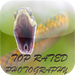 Top Rated Photography